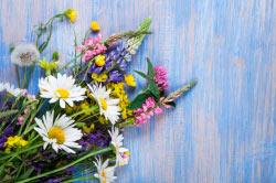 Графік роботи на квітневі та травневі свята
